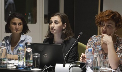 ადამიანის უფლებათა დაცვის სტრატეგიებისა და სამოქმედო გეგმის მონიტორინგი:შეზღუდული შესაძლებლობის მქონე პირთა უფლებები