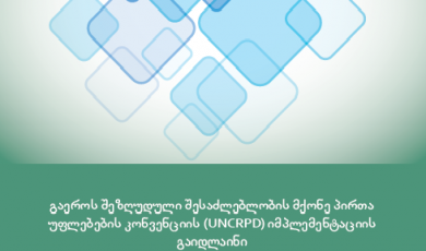 Guidelines on the Implementation of the UN Convention on the Rights of Persons with Disabilities (UNCRPD)