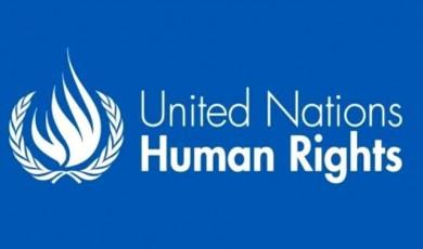 UPR-ის ფარგლებში მთავრობის მიერ მიღებული რეკომენდაციების შესრულების ალტერნატიული შუალედური ანგარიშების მიმოხილვა