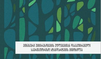 ეთნიკური უმცირესობების უფლებებთან დაკავშირებული საერთაშორისო სტანდარტების მიმოხილვა