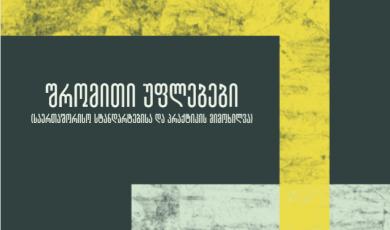 შრომითი უფლებები  (საერთაშორისო სტანდარტებისა და პრაქტიკის მიმოხილვა)