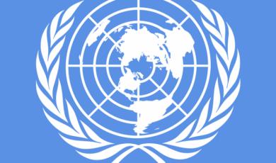 საზოგადოებრივი და რელიგიური ორგანიზაციების ჯგუფმა გაეროში UPR-ისფარგლებში ანგარიში წარადგინა