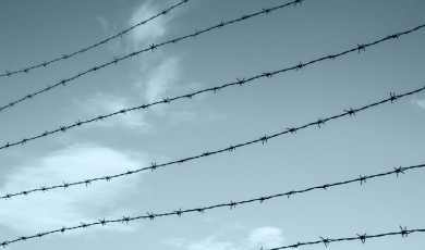 Assessment of the Law on Occupied Territories from Rights and Humanitarian  Perspectives