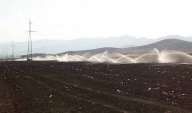 ბოლნისის მუნიციპალიტეტის სამი სოფელი სარწყავი წყლის გარეშეა დარჩენილი