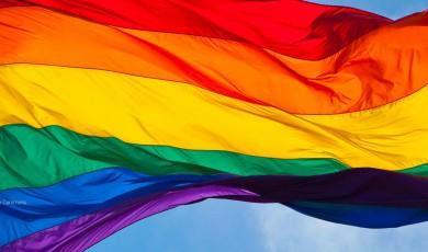 Non-Governmental Organizations' Statement Regarding Increasing Homophobic Violence