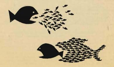 სოციალური საკითხების პოლიტიზირება და ბრძოლა ტრანსფორმაციისთვის