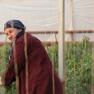 აზერბაიჯანელი მუშა ქალების პრეკარიული ყოფა