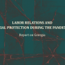 Labor Relations and Social Protection During the Pandemic - Report on Georgia