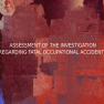 Assessment of The Investigation Regarding Fatal Occupational Accidents