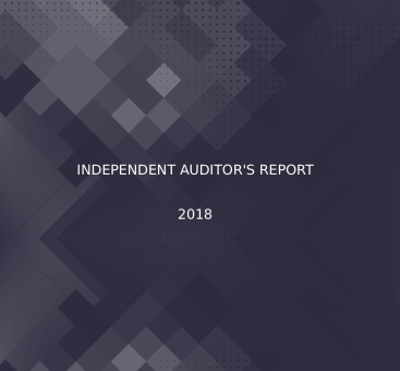 Independant Auditors' Report/2018