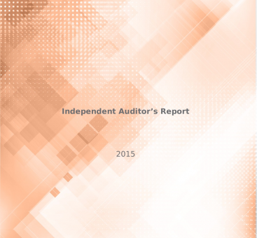 Independent Auditor's Report/2015