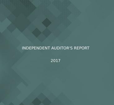 Independant Auditors' Report/2017