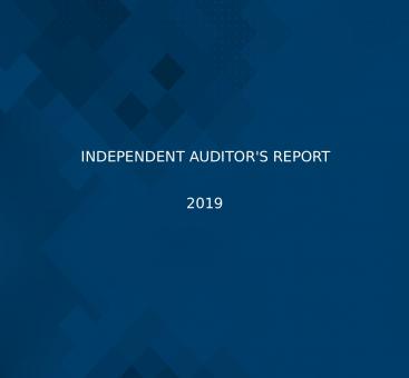 Independant Auditors' Report/2019